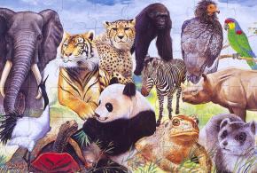 Endangered species finally get much neededattention