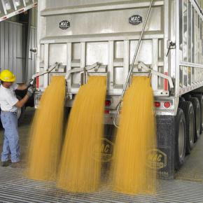 Ethanol Misstep