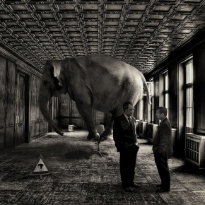 Long-Term Care: The Elephant in the Room
