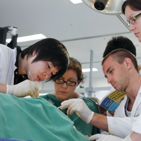 The Importance of Preventive Care Training in MedicalEducation