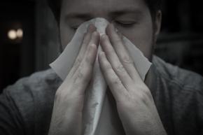 The True Cost of SickDays