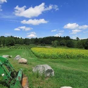 U.S. Agriculture: Economic Gains of ImmigrationReform